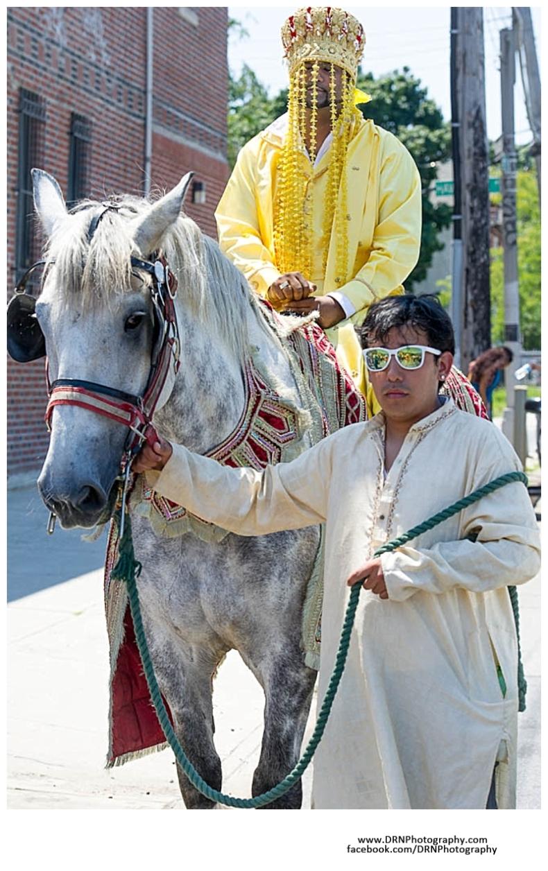 Jericho Terrace Mineola NY Long Island Hindu Indian Wedding Photographer Video Photo